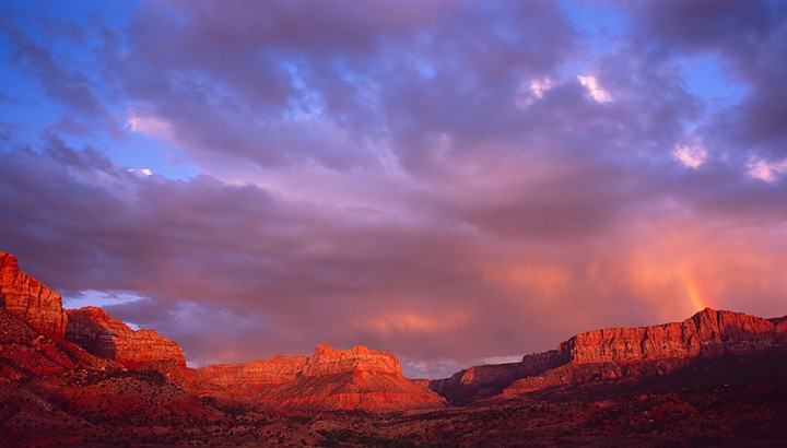 Welcome to Springdale! We hope you enjoy your stay at the foot of Zion National Park.