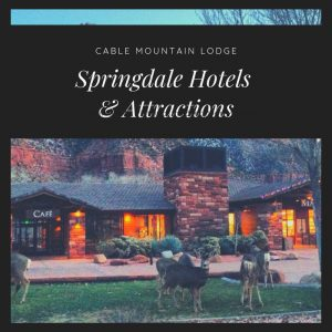 Springdale Hotels and attractions