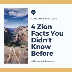 4 Zion Facts You Didn't Know Before