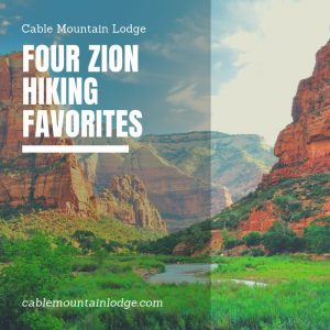 Four Zion Hiking Favorites 2